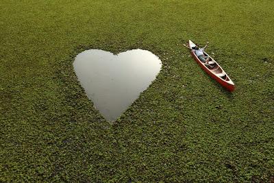 cinta bahagia - mengenali dan memahami akan cinta, kasih dan sayang yang sebenar