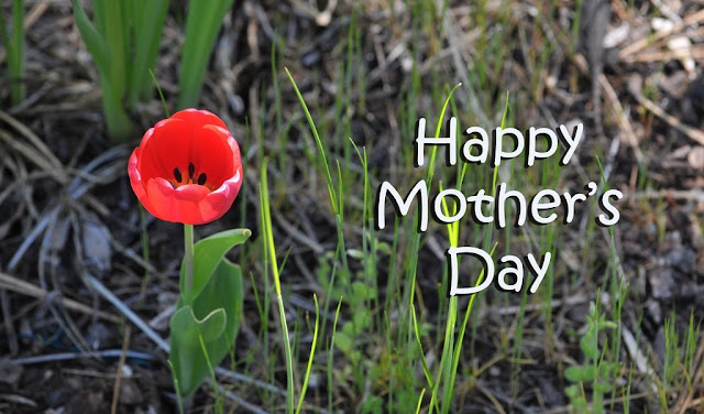 free-download-mothers-day-photos