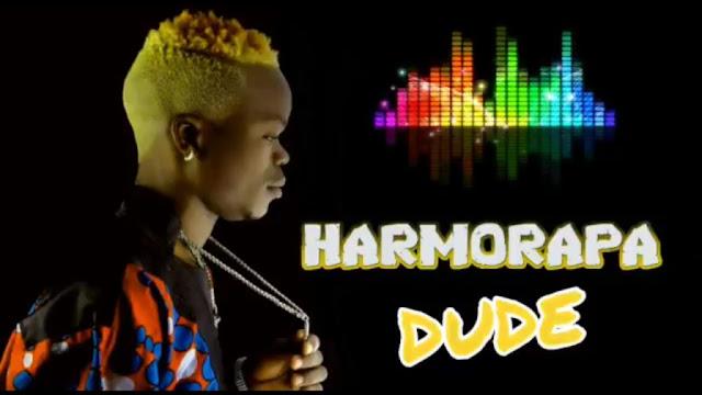 Harmorapa - Dude