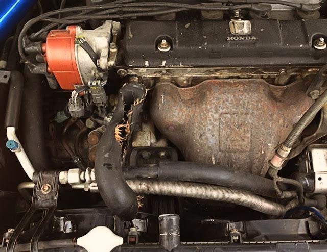 broken-car-radiator-hose