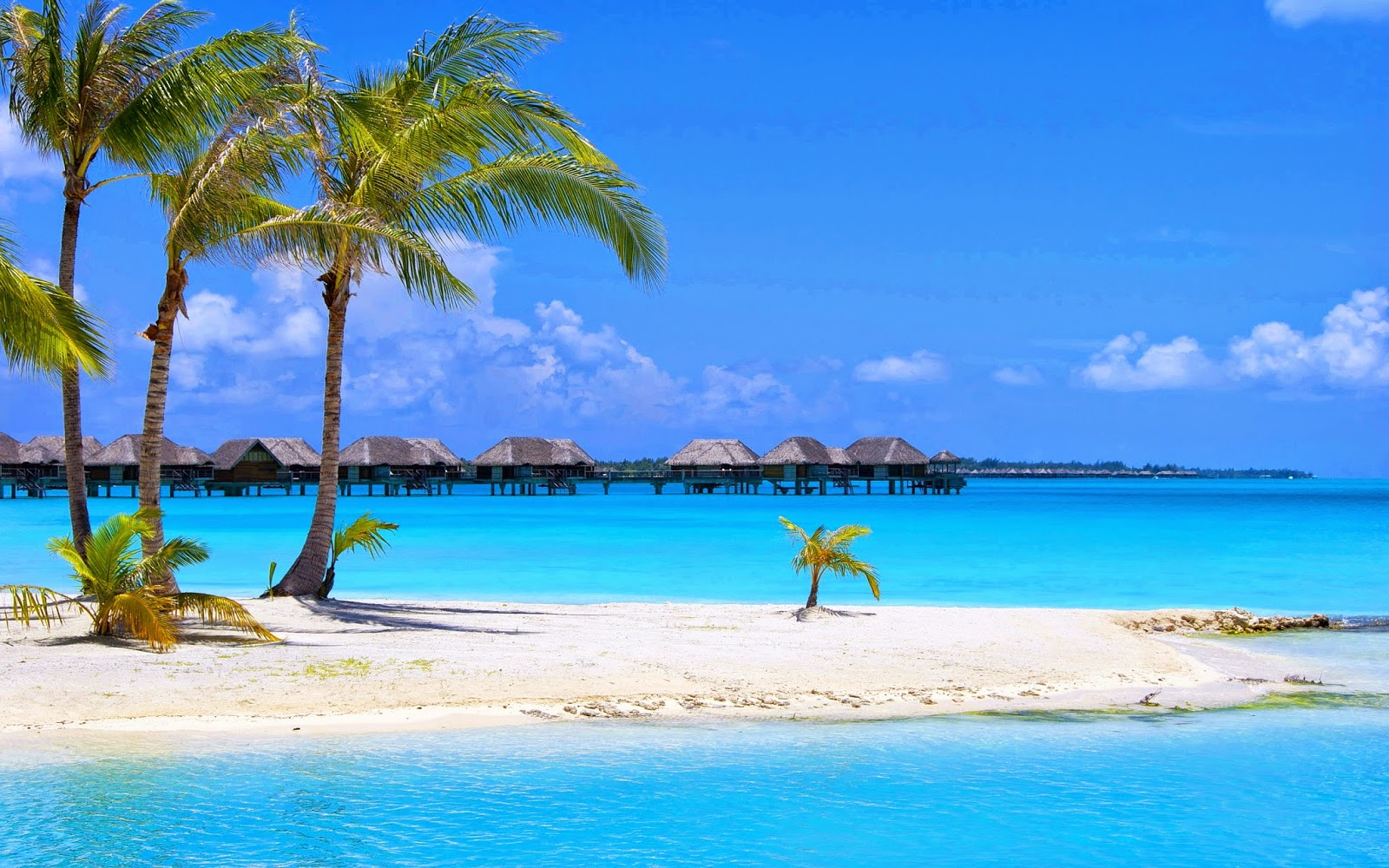 Hd Tropical Island Beach Paradise Wallpapers And Backgrounds: Desktop Backgrounds 4U: Beach Backgrounds