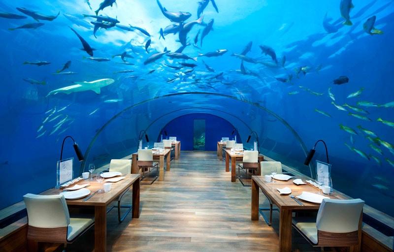 Самые дорогие рестораны в мире