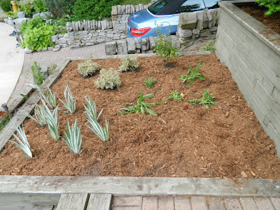 The Beach Toronto Front Garden Tier Five After by Paul Jung Gardening Services--a Toronto Gardening Company