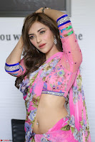 Angela Krislinzki Rogue Movie Fame Telugu Actress in Saree Backless Choli 033.JPG