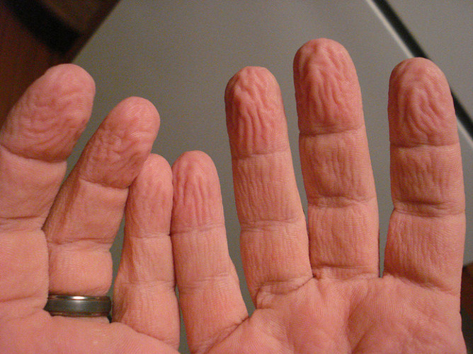 Notes from Two Scientific Psychologists: Do our fingers ...
