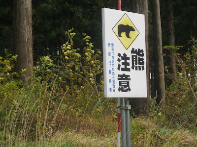 Beware of bears in Fukushima.