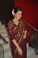 Nikki Galrani Latest Photos in Traditional Saree TollywoodBlog