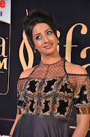 Sanjjanaa Galrani aka Archana Galrani in Maroon Gown beautiful Pics at IIFA Utsavam Awards 2017 13.JPG