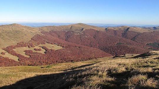Dolina źródliskowa Wołosatki.