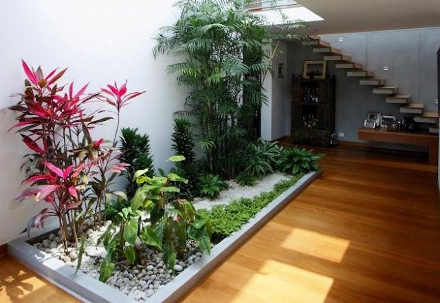 7800 Desain Taman Teras Belakang Rumah Terbaru