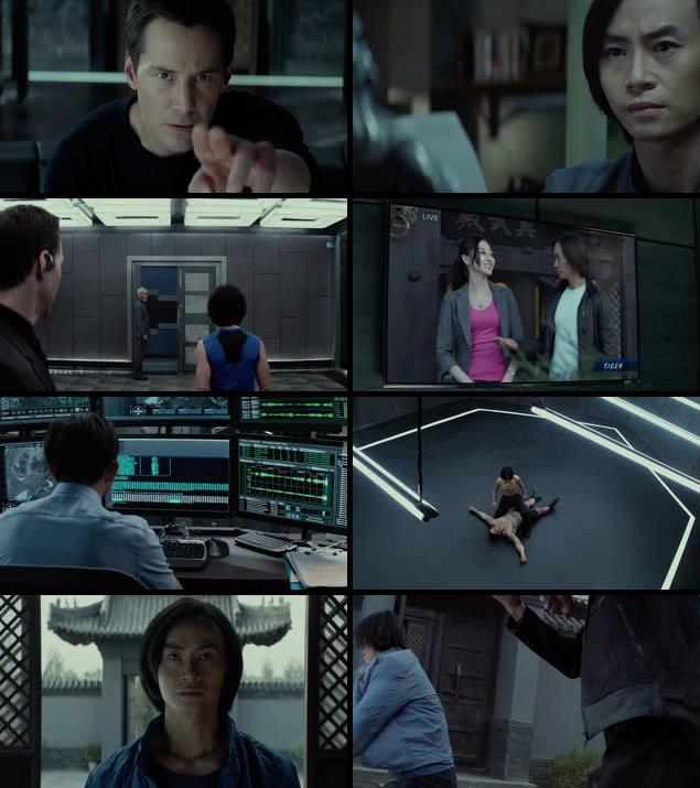 Man Of Tai Chi 2013 Dual Audio Hindi 480p BluRay
