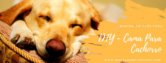 M3T - DIY Caminha Para Cachorro