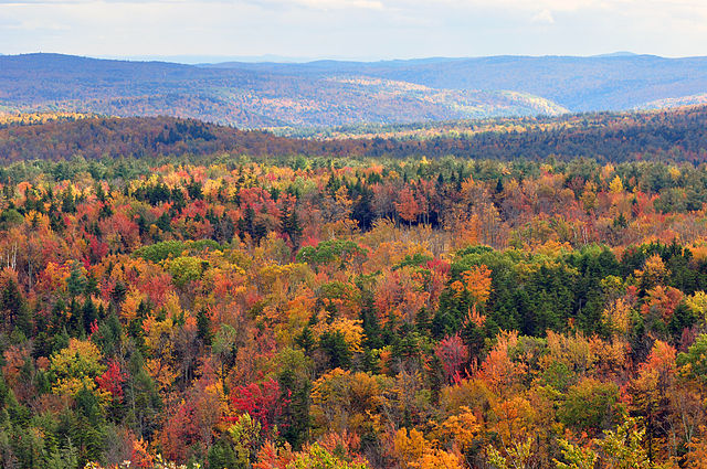 Fall colours as seen from Hogback mountain, Vermont