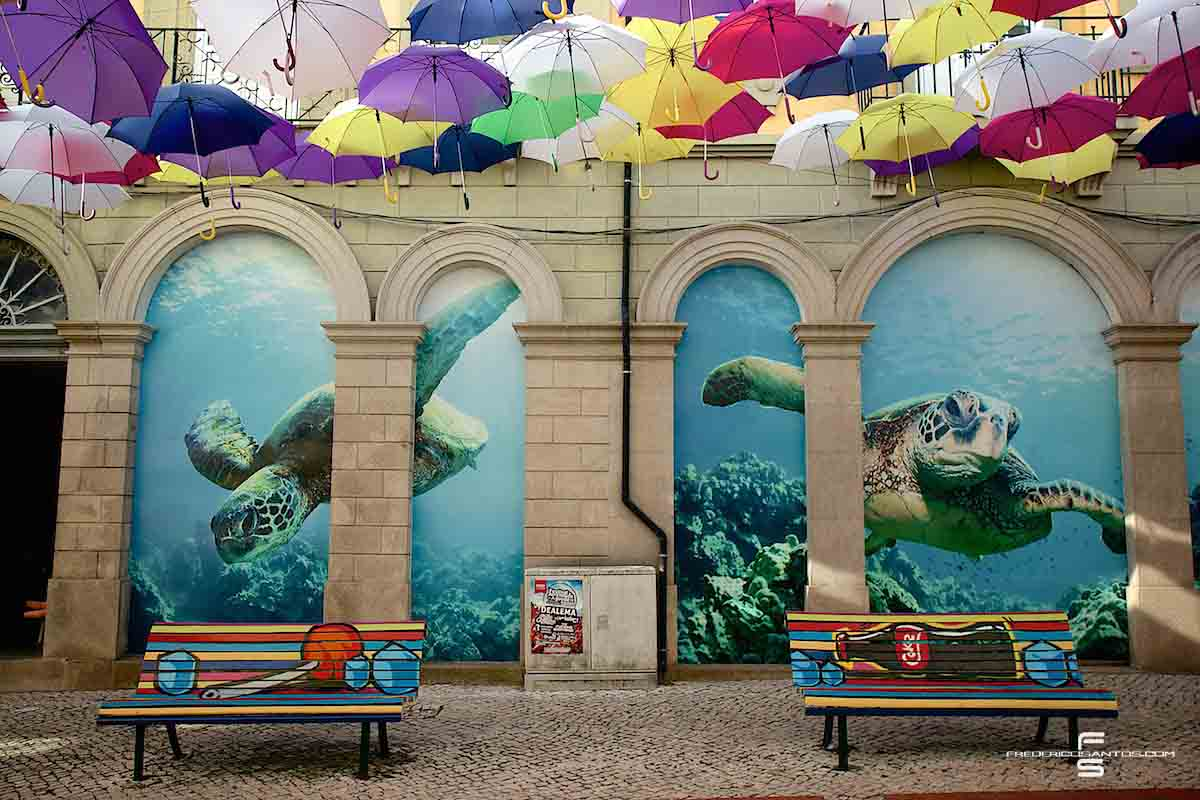 Agueda Portugal umbrellas guarda chuva colours turtle