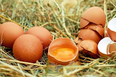 Cara Membuat Parfum Walet Dari Telur Plus Madu
