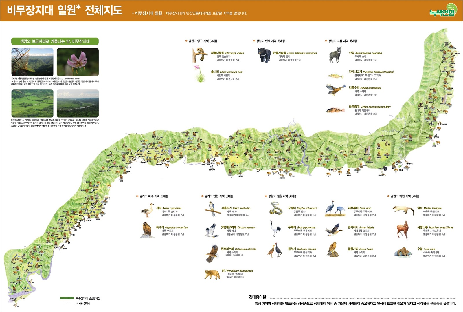 Map of the Korean Demilitarized Zone & the endangered animals that live in it