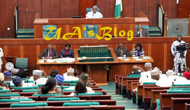 Reps blow hot over snatching of mace from Nigerian Senate