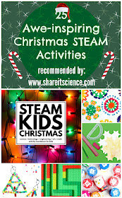 http://steamkidsbooks.com/product/steam-kids-christmas/ref/26/