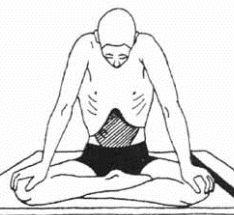 agnisar asana for digestive system,yoga asana for digestive system,yoga poses for healthy digestive system