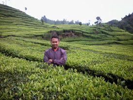 Sarip Hidayat Blogger