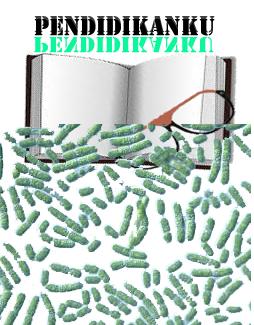 Pengertian dan Ciri-Ciri Cyanobacteria