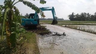 Dinas Bina Marga Lakukan Normalisasi Pelebaran Irigasi Desa Pulojaya