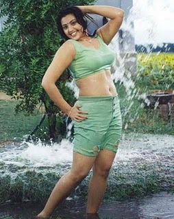 Wallpapers Telugu Actress Meena Hot And Cleavage Images Collection