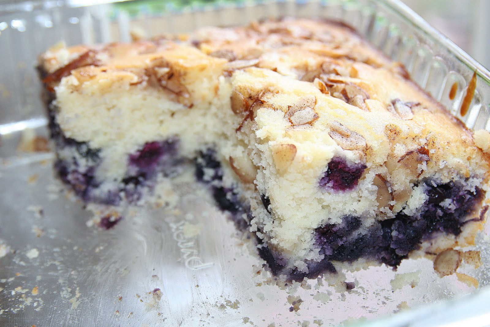 The Best Ever Blueberry Crumb Cake