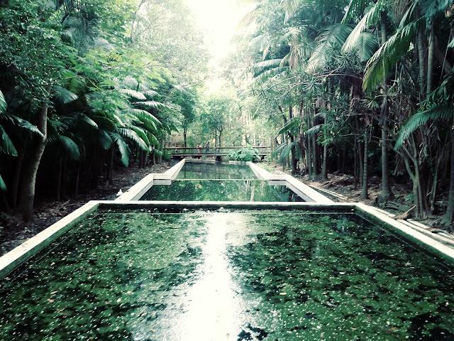 parque da agua branca