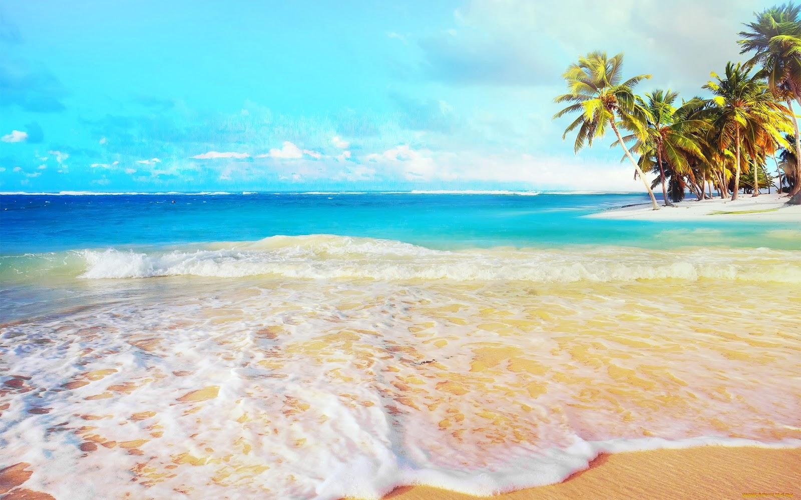 Unique wallpaper 30 fotos de playas tropicales con agua cristalina sol palmeras y arenas - Playa wallpaper ...