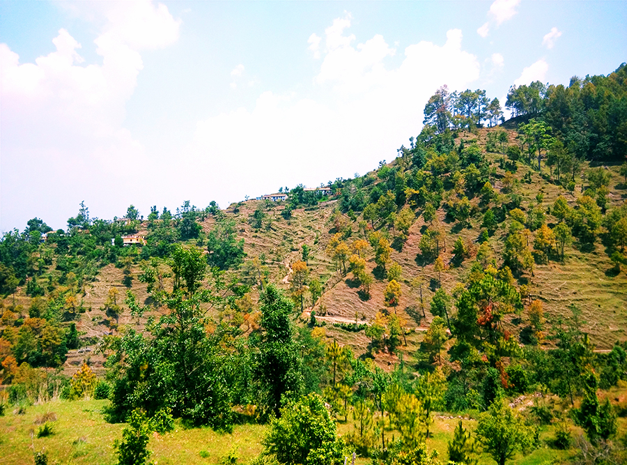 hiking almora adventure
