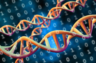 How Quantum computing with DNA storage will affect your health