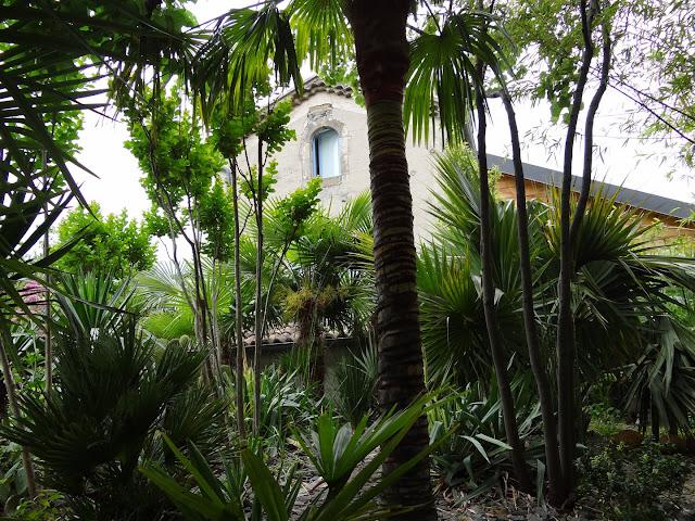 (07) Le jardin de Bésignoles - Privas - Page 2 DSC08094