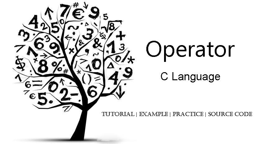 girfa   student help  operator c language