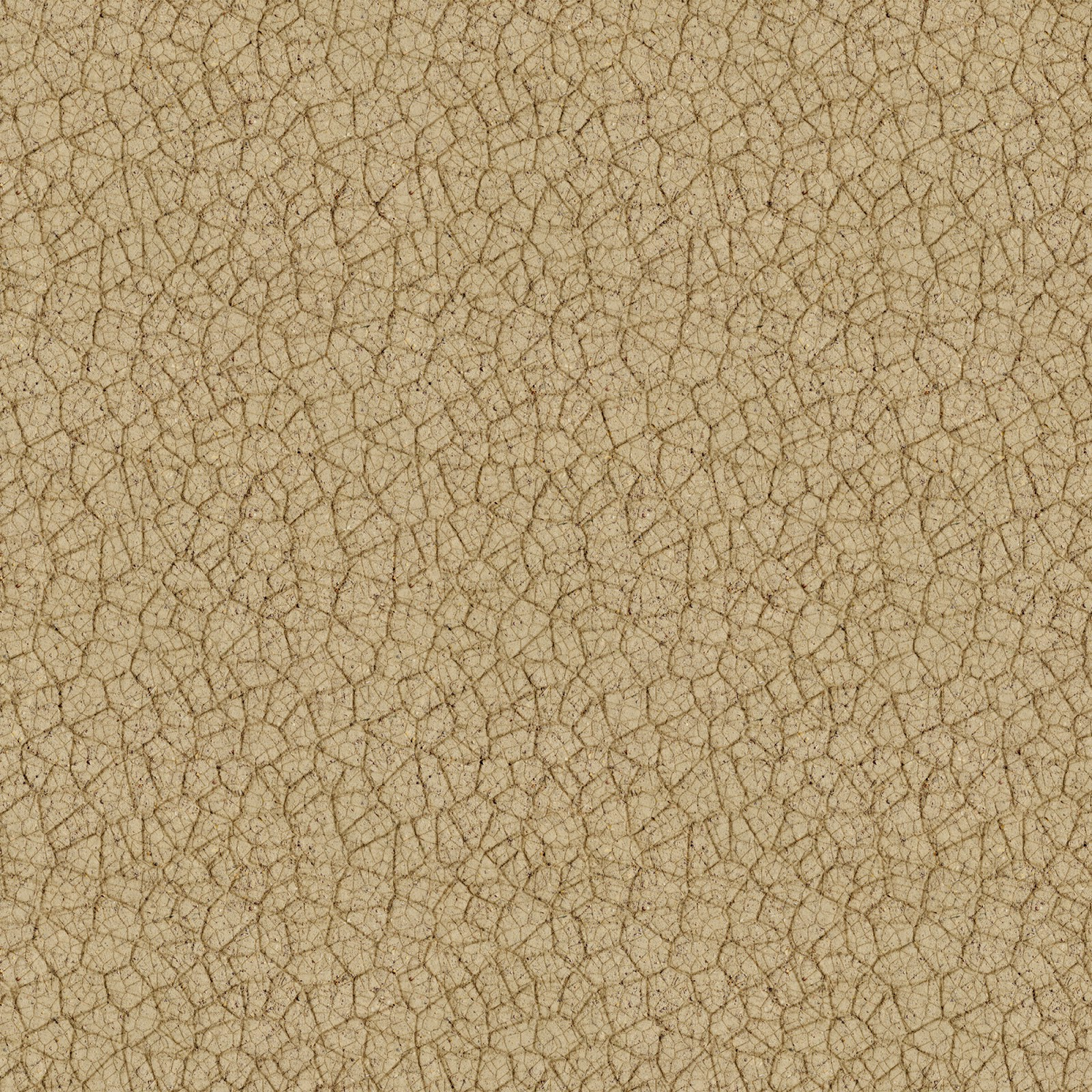 High Resolution Textures Ground