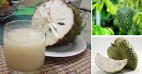 https://steviaven.blogspot.com/2018/05/la-guanabana-anticancerigeno-higado-inmune.html