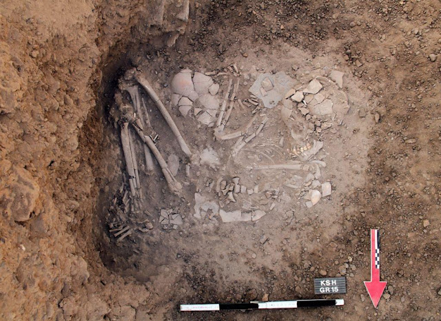Evidence of trepanation found in 7,000 year old skull from Sudan