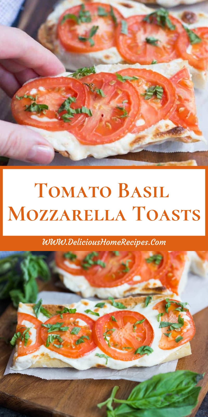 Tomato Basil Mozzarella Toasts