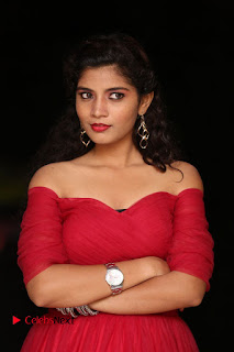Actress Bindu Pictures in Red Dress at Attarillu Movie Press Meet 0007.JPG
