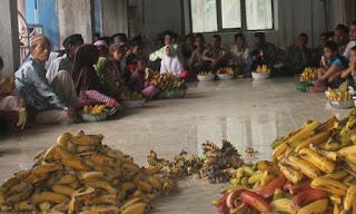 Tradisi Mauludan Di Desa Durenan,Sajikan Ribuan Pisang Sampai Puluhan Ambeng Untuk Warga