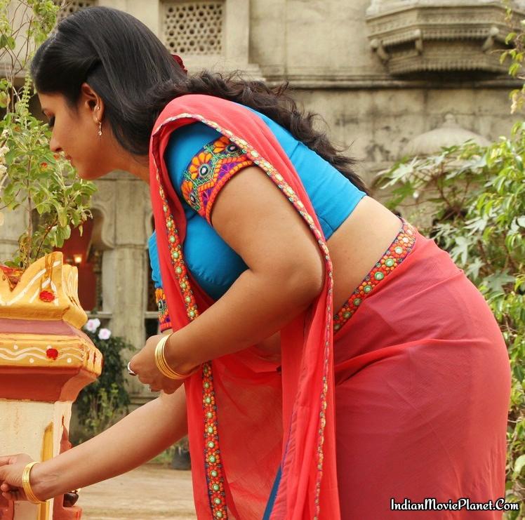 Indian Actress Gallery : Poonam Bajwa In Hot Photos In