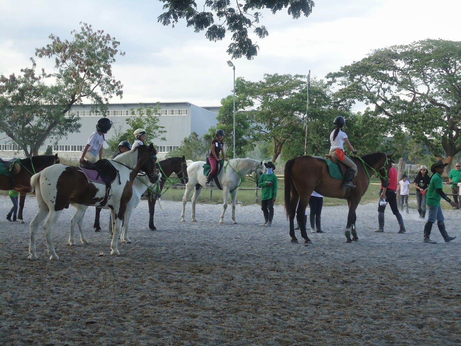 Horse Riding Philippines Yana S First Horse Camp Camp
