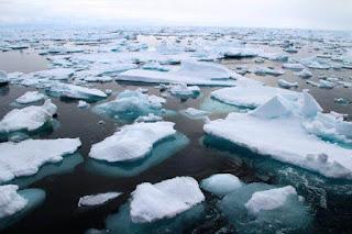 8 Dampak Perubahan Iklim