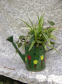 garden watering can pot