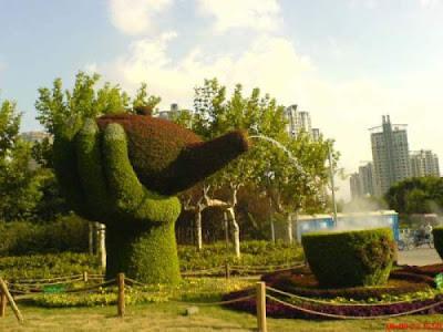 Diseño con arbustos en el jardín