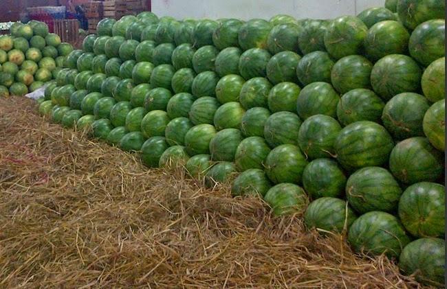 semangka nya banyak banget