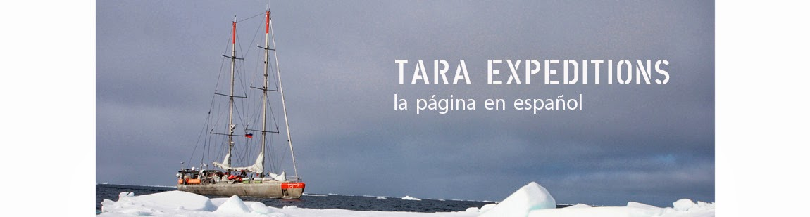 TARA EXPEDITIONS en español