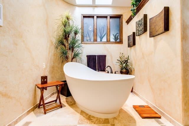 decorando banheiro com plantas