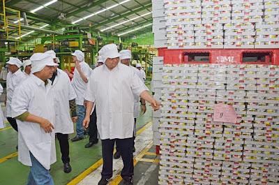 Industri Berperan Penting Serap Bahan Baku dan Tenaga Kerja Lokal