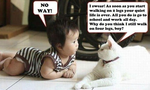 Funny Quotes About Kids Funny Quotes About Life About Friends And
